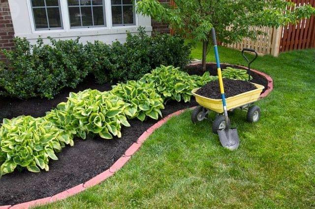 Renueva tu jardín con poco presupuesto